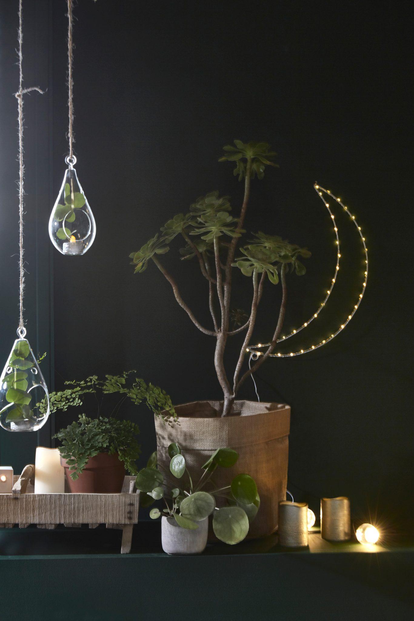 decoration noel vert lune plantes tendance 2018 2017